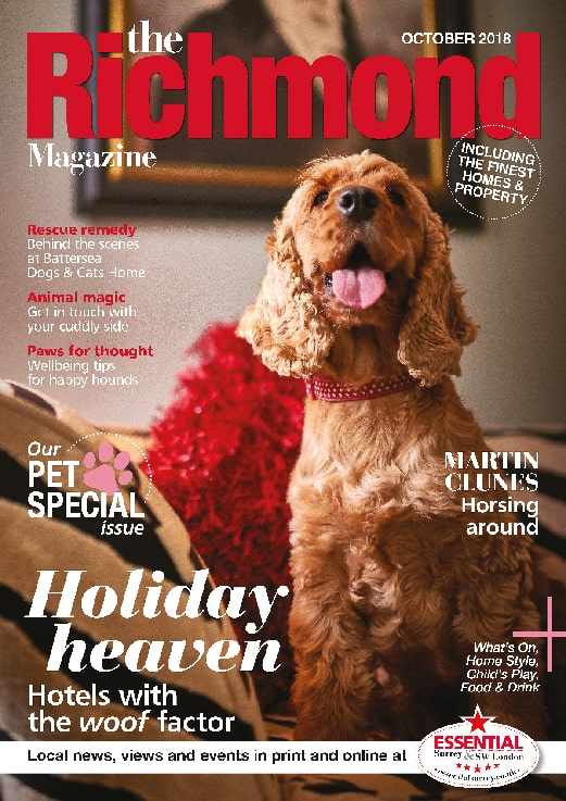 An image of an adorable dog on the front cover of the Richmond Magazine