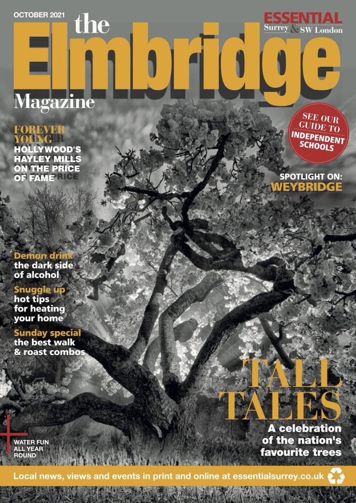 the-elmbridge-magazine-october